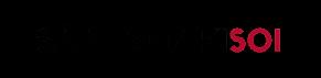 sääksmäki soi logo